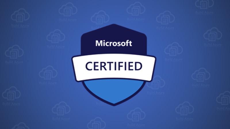 Microsoft PL-100 Exam Questions