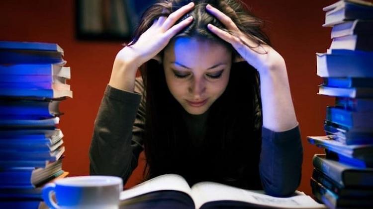 Exam Questions Dumps